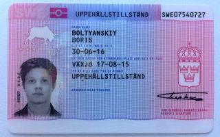 Жизнь и эммиграция в Швецию: плюсы и минусы переезда на ПМЖ