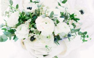 Свадьба зимой: плюсы и минусы торжества, рекомендации молодоженам