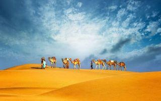 Жизнь в ОАЭ — основные плюсы и минусы, трудоустройство и список востребованных профессий