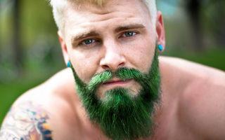 Стоит ли мужчине отращивать бороду: плюсы и минусы