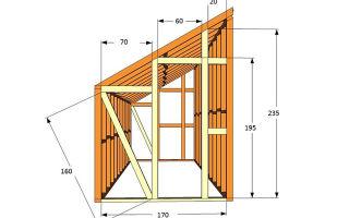 Теплица из поликарбоната: плюсы, минусы и особенности конструкции