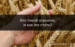 Агроном: плюсы и минусы профессии