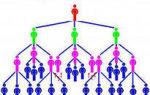 Бинарный маркетинг-план: что это, плюсы и минусы