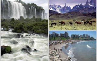 Плюсы и минусы проведения родов в аргентине