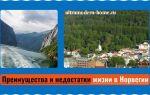Плюсы и минусы жизни и работы в Норвегии: получение и стоимость оформления ВНЖ, климатические особенности
