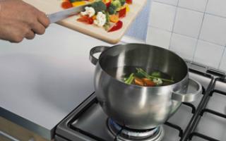 Электрическая плита: преимущества и недостатки устройства, популярные модели