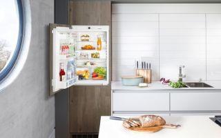 Встроенный холодильник: плюсы и минусы выбора, популярные модели