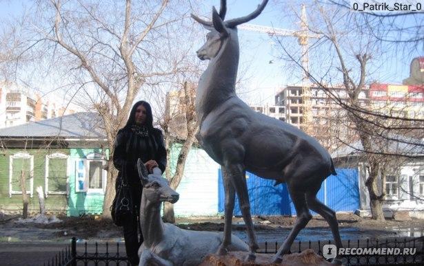 Плюсы и минусы жизни и переезда в Омск