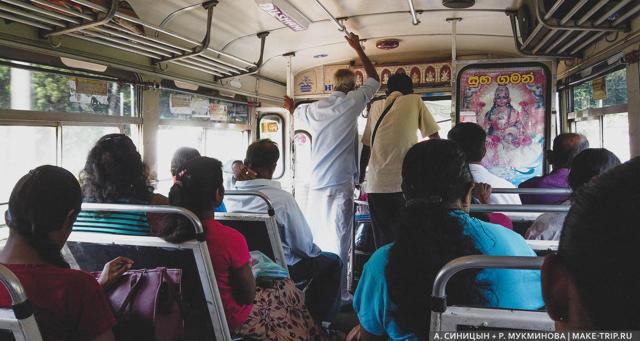 Стоит ли ехать на Шри-Ланку: плюсы и минусы отдыха в стране