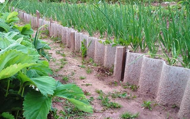 Высокие грядки в огороде: плюсы и минусы