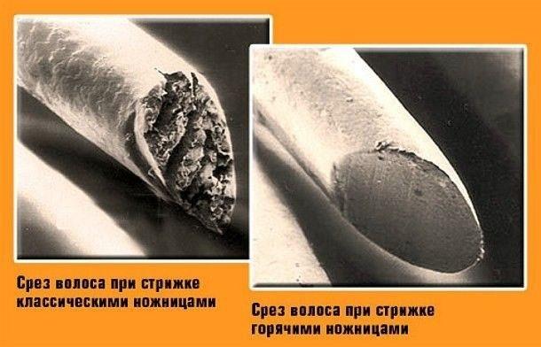 Стрижка горячими ножницами: плюсы и минусы процедуры (с фото)