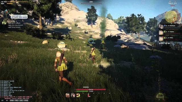 Стоит ли играть в black desert — плюсы и минусы игры