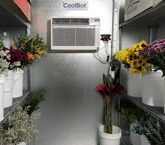 Цветочный бизнес — основные плюсы и минусы