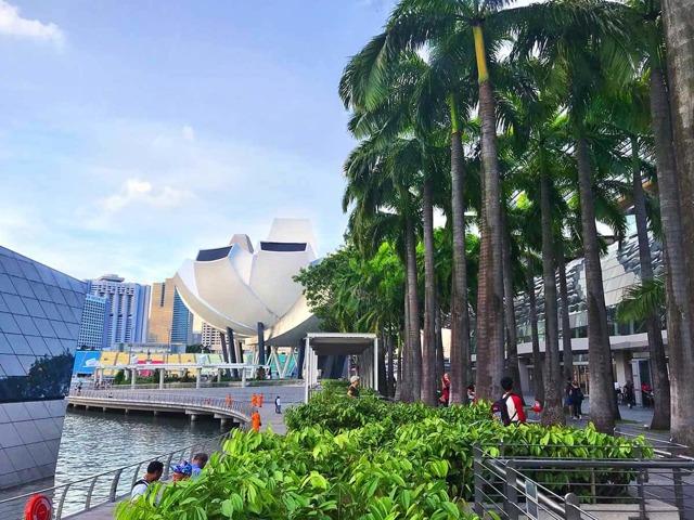 Плюсы и минусы жизни в Сингапуре