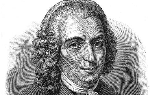 Плюсы и минусы теории Карла Линнея