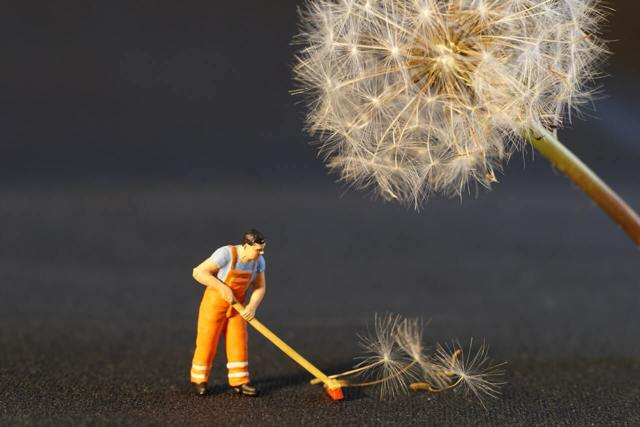 Клининговый бизнес: особенности, плюсы и минусы
