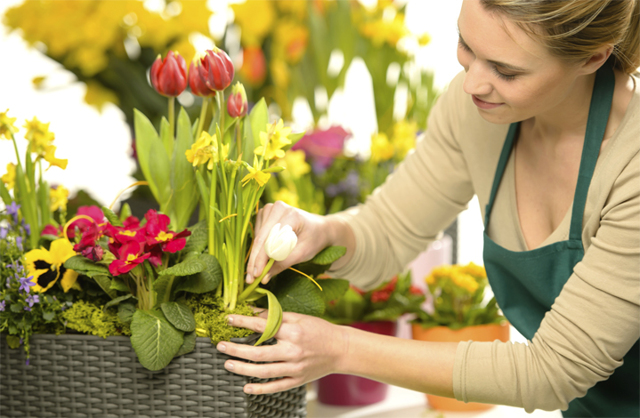 Профессия флорист: плюсы и минусы выбора