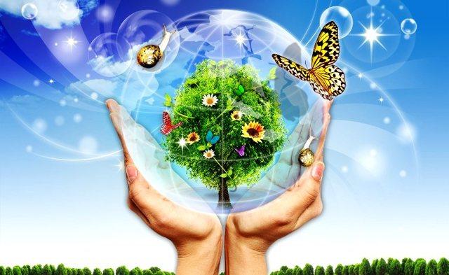 Влияние человека на природу: плюсы и минусы