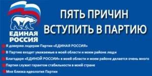 Вступление в политическую партию: плюсы и минусы