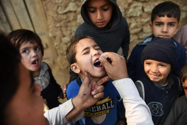 Стоит ли делать прививку от полиомиелита?