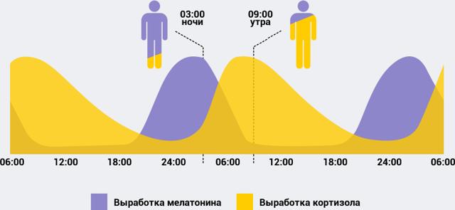 Стоит ли ложиться спать на 3 часа и как это влияет на организм