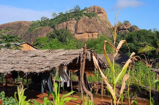 Стоит ли ехать в Занзибар: плюсы и минусы отдыха