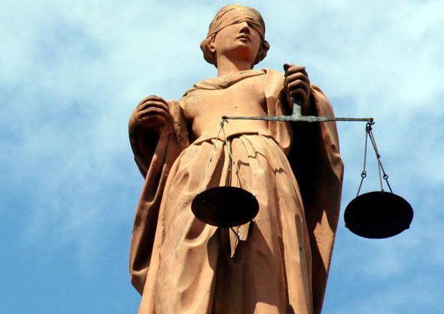 Социологическая теория права: что это, плюсы и минусы