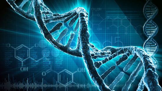 Профессия генетик: плюсы и недостатки