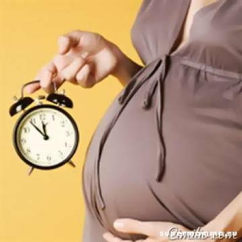 Стоит ли устраиваться на работу во время беременности?