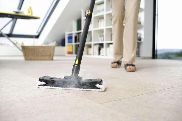 Плюсы и минусы покупки пароочистителя для дома