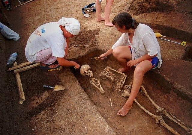 Плюсы и минусы профессии археолога