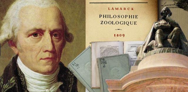Плюсы и минусы теории Ламарка