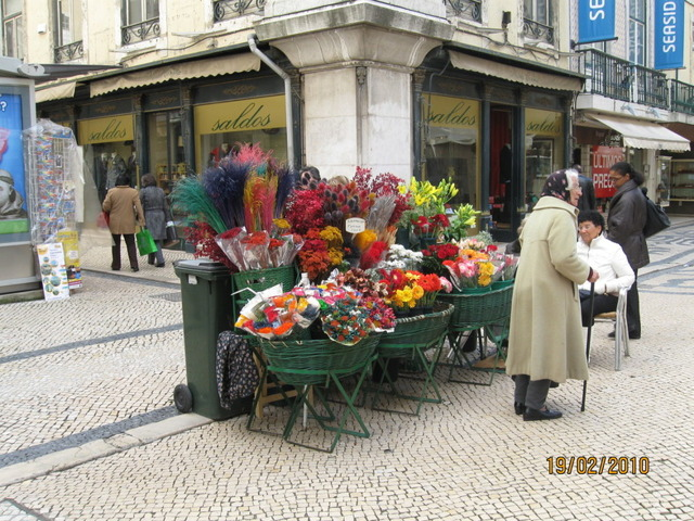 cтоит ли зимой ехать в Португалию