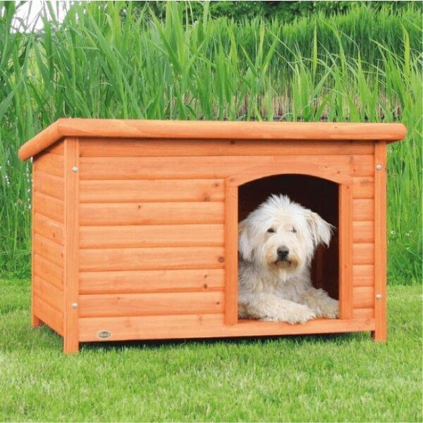 Стоит ли делать будку для собаки: плюсы и минусы