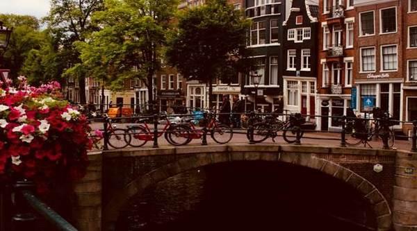 Жизнь в Нидерландах: плюсы, минусы и что нужно знать