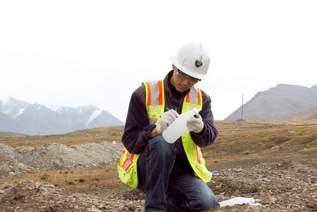 Профессия эколог: особенности, плюсы и минусы