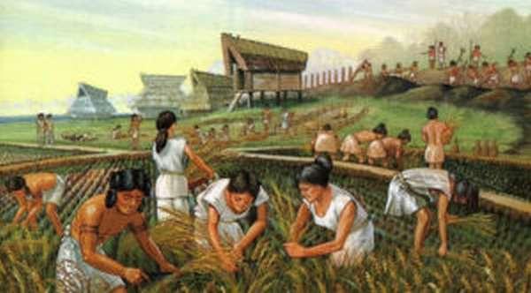 Традиционная экономическая система: плюсы и минусы