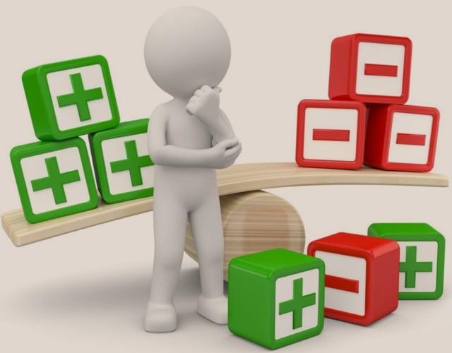Плюсы и минусы индивидуального предпринимательства