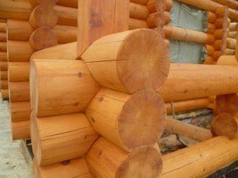 Баня из оцилиндрованного бревна — плюсы и минусы материала