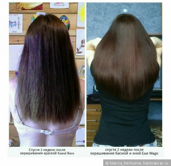 Хна для волос: плюсы и минусы использования