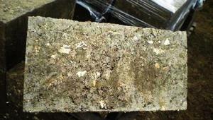 Баня из опилкобетона — плюсы и минусы выбора материала