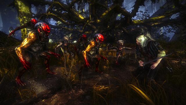 Стоит ли играть в Ведьмак 2: плюсы и недостатки игры