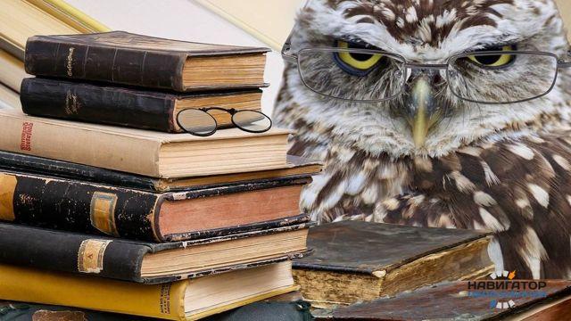 Профессия писатель — плюсы и минусы выбора