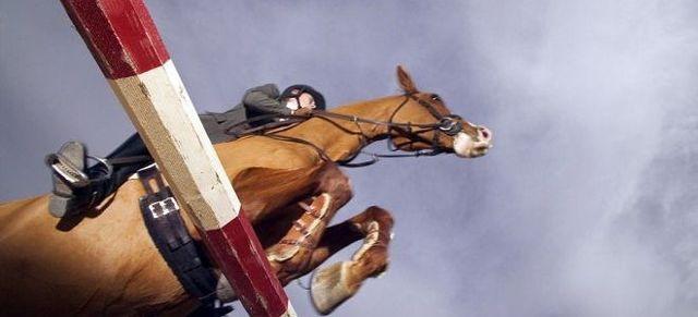 Конный спорт, его плюсы и минусы