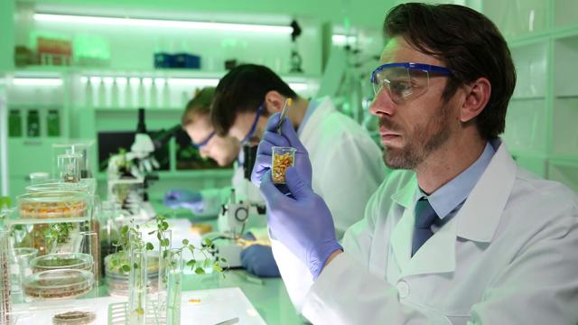 Профессия биотехнолог: стоит ли поступать, плюсы и минусы
